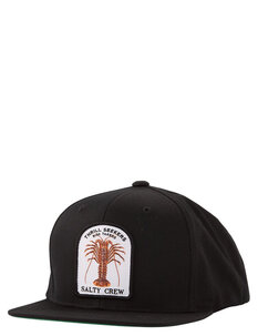 BUGGIN OUT 6 PANEL CAP-mens-Backdoor Surf