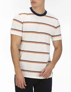 DRI FIT HARVEY STRIP TEE-mens-Backdoor Surf